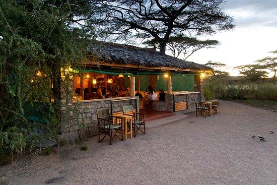 Ndutu Safari Lodge: The bar / lounge in the evening