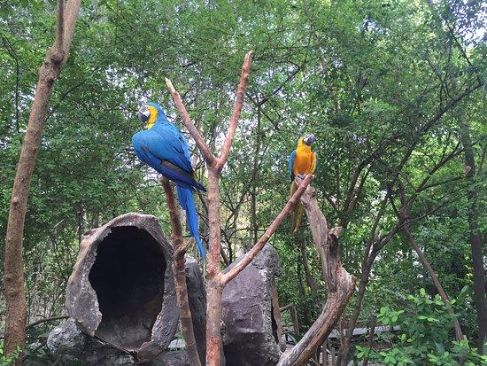 Resultado de imagem para Parque Histórico Guayaquil