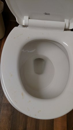 Waltham, MA: Toilet when I checked in. There were empty fireball bottles in the trash next to it.