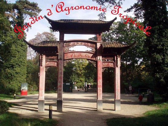 Jardin D Agronomie Tropicale Porte Chinoise Picture Of Bois De