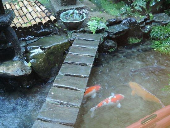 Kikokuso: Japanese Garden!!