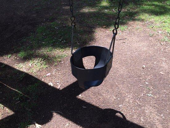 Monteagle, TN: Kids swings, adult swings, tire swings for the family.