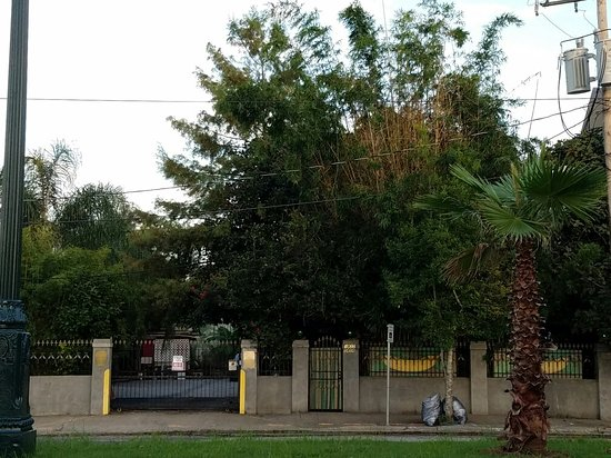 1870 Banana Courtyard French Quarter / New Orleans B&B: 20160813_190301_large.jpg