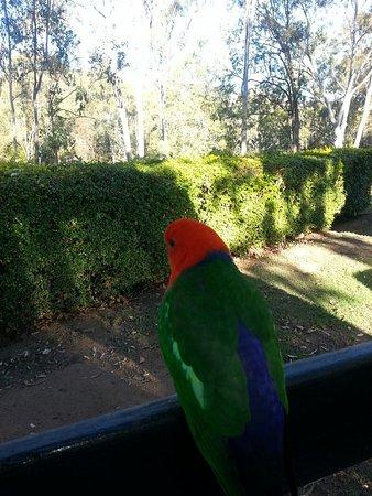 Cania Gorge National Park, Australia: 20160728_154221_large.jpg