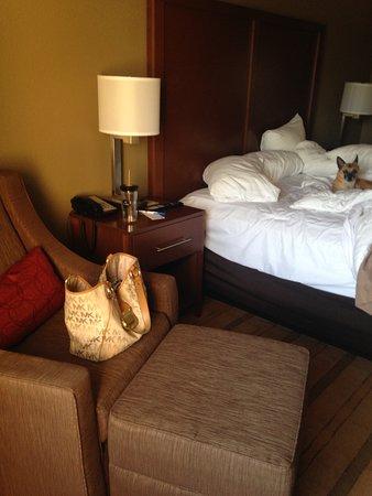 Comfort Inn & Suites : My little man enjoying the room.