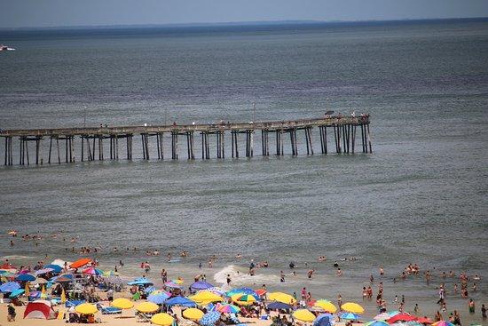 20160801 073835 picture of virginia beach for Fishing virginia beach