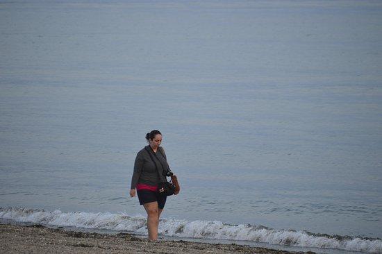 East Lyme, CT: Beach walking