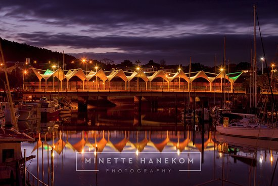 The Canopy Bridge, also know as the Market Bridge. Town Basin, Whangarei.