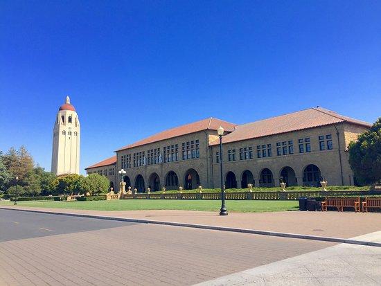 Palo Alto, CA: photo2.jpg