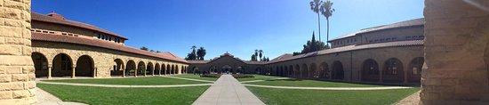 Palo Alto, CA: photo4.jpg