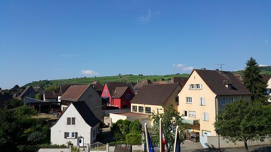 Mittelwihr, Francia: 객실 베란다에서 바라보는 전망
