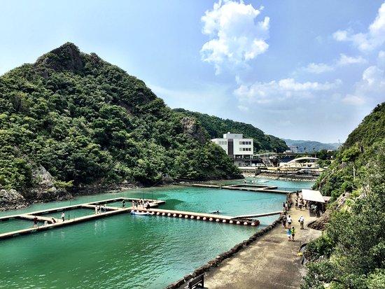 Taiji-cho, Japan: photo0.jpg