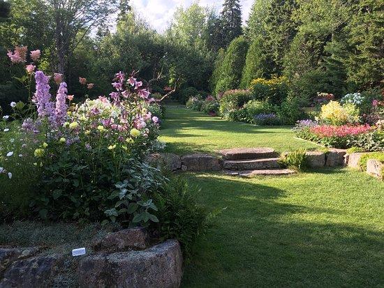 Thuya Gardens: photo9.jpg