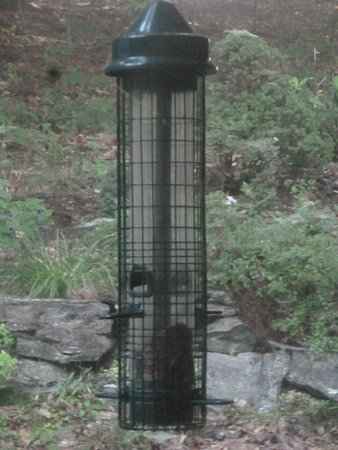 Joppa Flats Education Center and Wildlife Sanctuary : Bird-feeder recommended by the Audubon Society