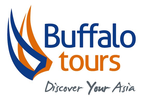 Buffalo Tours - Thailand