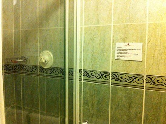 The Western Hotel: shower