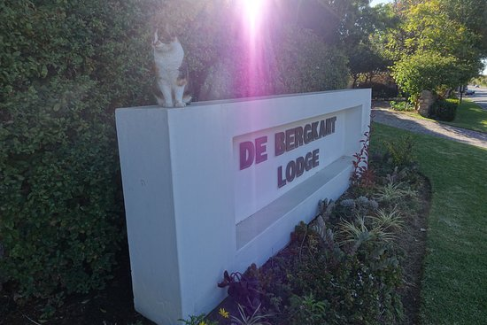 Prince Albert, Afrique du Sud : De Bergkant Lodge - Sign with Guesthouse Cat 'Kriekie'