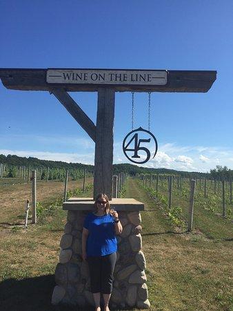 45 North Vineyard & Winery: photo3.jpg