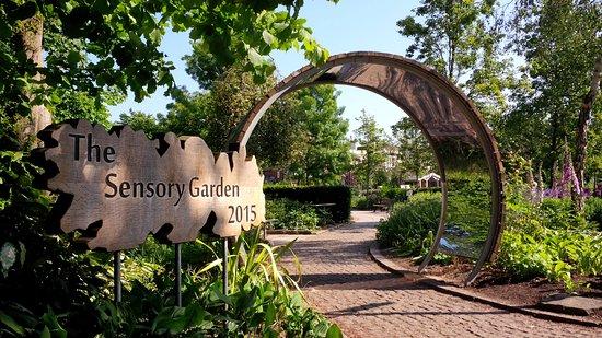 jephson gardens sensory garden - Sensory Garden