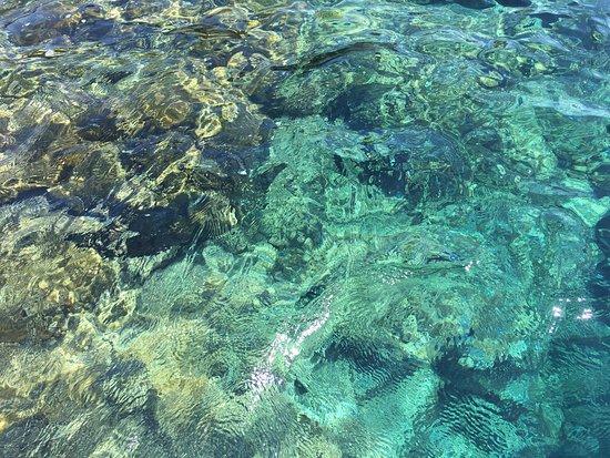 Ustica: photo8.jpg