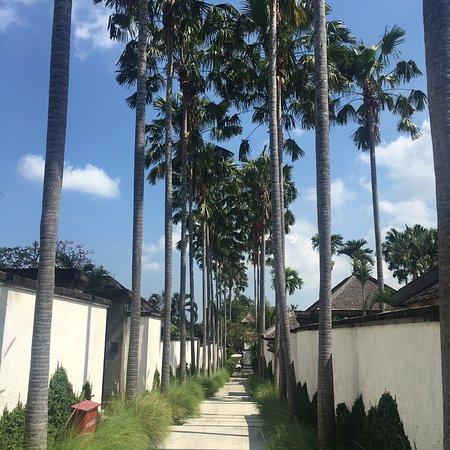 Villa Air Bali Boutique Resort & Spa afbeelding