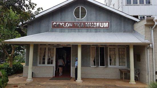 Ceylon Tea Museum照片