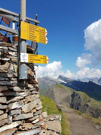 Grindelwald, Switzerland: 20160816_150919_large.jpg
