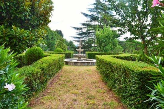 Hotel Oasi Neumann: Particolare giardino
