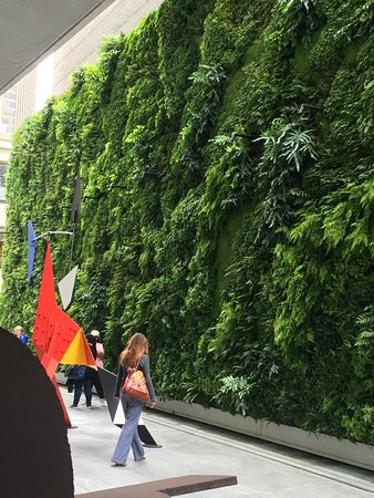 San Francisco Museum Of Modern Art (SFMOMA): The Living Wall.