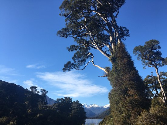 Lake Moeraki, Selandia Baru: photo2.jpg