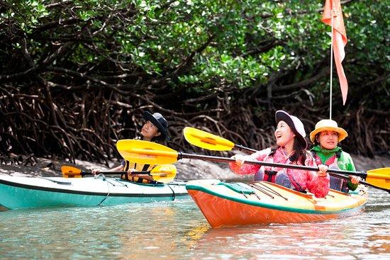 西表島の自然体験ツアーLBカヤックステーション