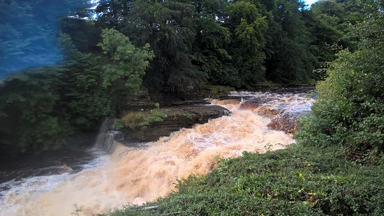 Thornton Rust, UK: Aysgarth falls: da non perdere