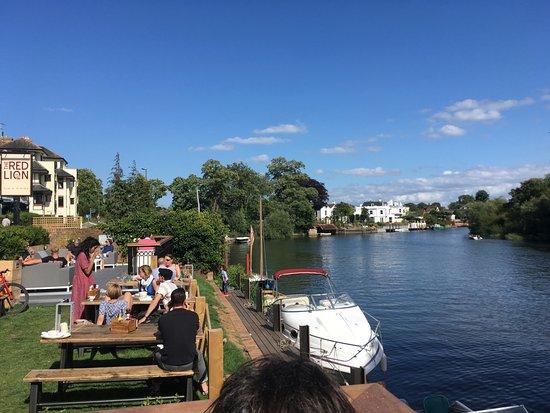 Shepperton, UK: Red Lion beer garden