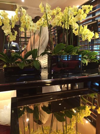 45 Park Lane - Dorchester Collection : beautiful flower decoration, fresh orhids