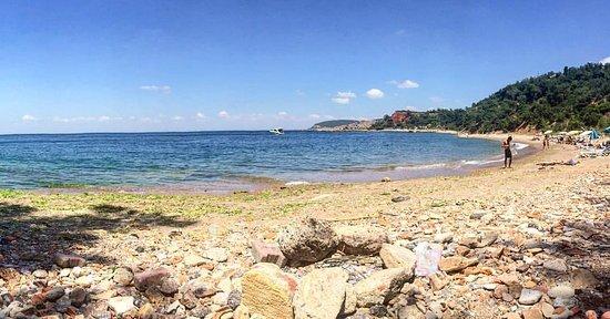 Princes' Islands, Turcja: Madam Martha Koyu İstanbul'da denize girebilecek nadir bakir kalmış yerlerden biri.