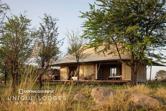 Sayari Camp, Asilia Africa照片
