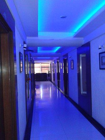 Hotel Dev Corporate: corrodore