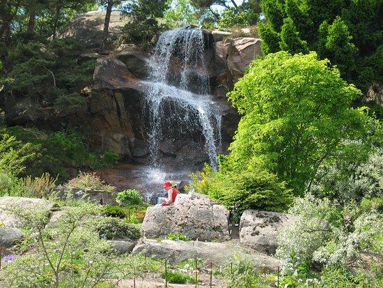 Botanical Garden: Klippträdgården/Rock garden