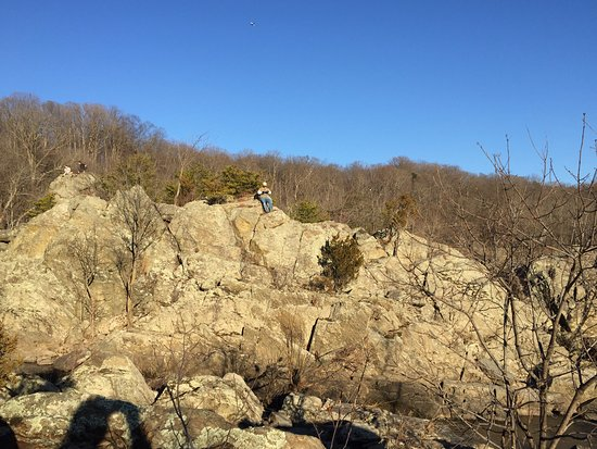 Potomac, MD: If you love to climb, this is the place!
