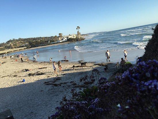 Del Mar, CA: photo4.jpg