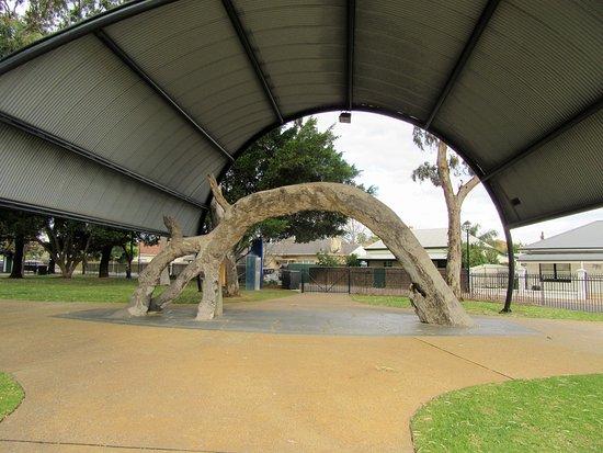 Glenelg, Australië: The shape of the tree