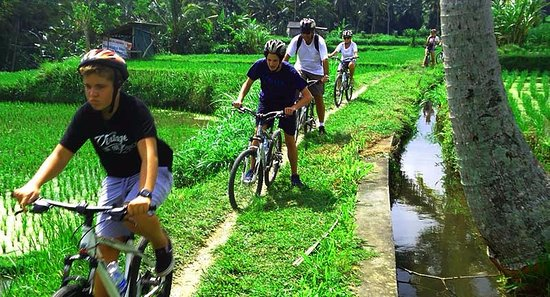 Blahbatuh, Indonesien: Cycling in ubud
