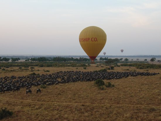 Skyship Co. Balloon Safaris