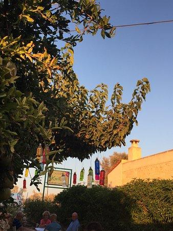 Taverna Kipos Garden : photo1.jpg