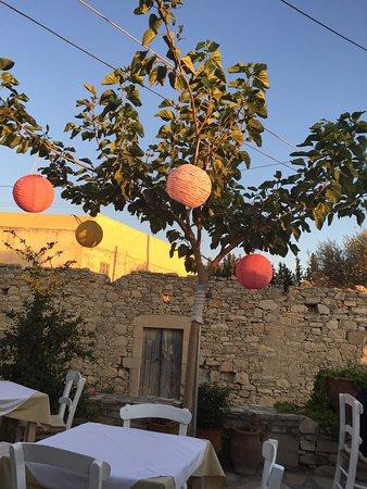 Taverna Kipos Garden : photo2.jpg