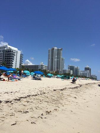 Circa 39 Hotel Mi Recuerdos De Mis Vacaciones A Miami Un Bello Y Acogedor