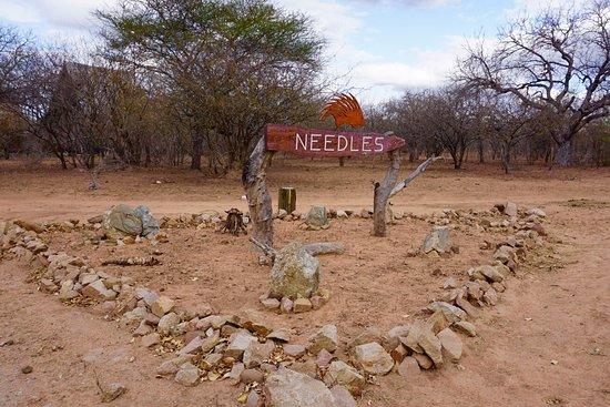 Needles Lodge: photo4.jpg