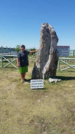 Kadoka, SD: Badlands Petrified Gardens