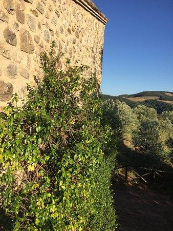 Tenuta Monte Volparo: photo9.jpg