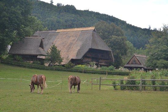 Gutach im Schwarzwald, Alemanha: Construcciones tipicas del medio rural